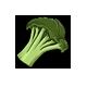 Broccoli-3